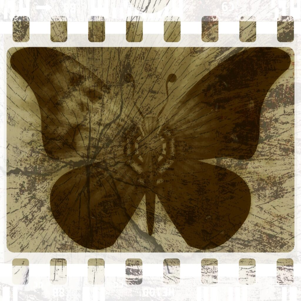 grunge butterfly - image from Pixabay